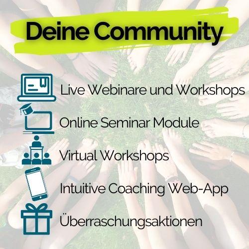 academy adams-apfel live webinare online seminare virtual workshops coaching app